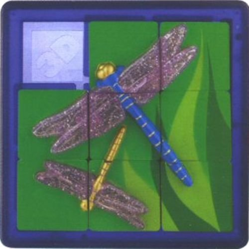 Buy Low Price DaMert Dragonfly #D Slide Puzzle (B001A6EM98)