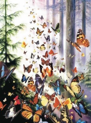 Cheap SunsOut Butterfly Woods 3000pc Jigsaw Puzzle by David Penfound (B004HSAOEI)