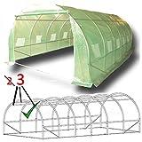 """6 m x 3 m serra a tunnel """"il più robusto nel suo genere"""". Una struttura completamente zincata con più sostegni..."""