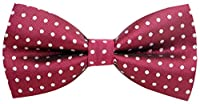 Carahere Mens Classic Little Polka Dot Pattern Bow Ties M94