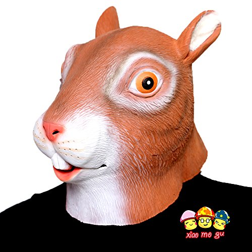 XIAO  (Brown Squirrel Costume)