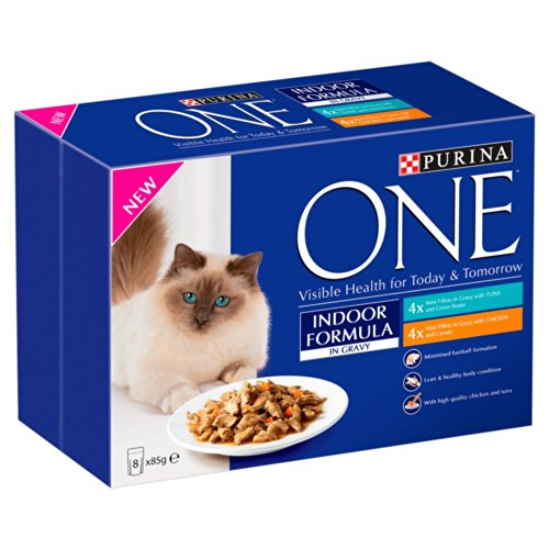 Purina One Indoor Turkey Whole Grains Dry Cat Food