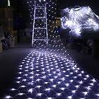 AGPtEK® 300 LED Net Mesh Fairy String Light Christmas Lights Lighting Party Wedding Tree-wrap White color