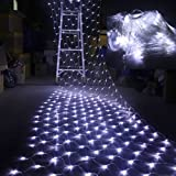 AGPtek 300 LED Net Mesh Fairy String Light Christmas Lights Lighting Party Wedding Tree-wrap White color