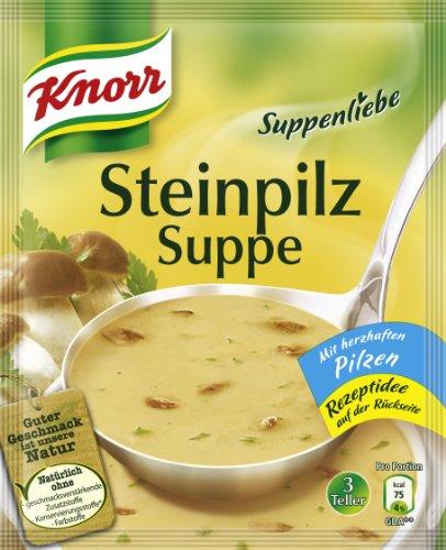 knorr-suppenliebe-steinpilz-suppe-10-x-3-teller-10-x-750-ml
