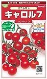 ミニトマト キャロル7 種子 [ サカタのタネ] / サカタのタネ