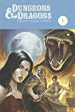 img - for Dungeons & Dragons: Forgotten Realms Omnibus book / textbook / text book