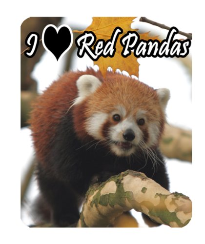 di-panda-tappetino-per-il-mouse-di-wildlife