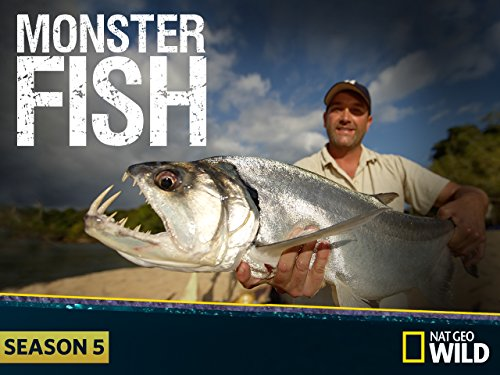 Watch monster fish episodes season 4 for Monster fish show