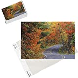 Photo Jigsaw Puzzle of Autumn trees line