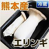 熊本県 ・ 九州産 エリンギ 1パック (約100g) 【 野菜セット と同梱できます 】【 九州 野菜 】【 きのこ キノコ えりんぎ 菌 】