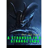 A Stranger in a Strange Land ~ Ibnul Jaif Farabi