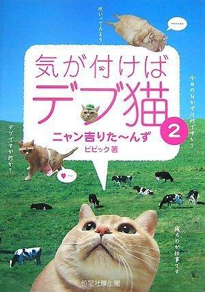 気が付けばデブ猫2