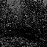 Black Oni by Guapo (2005-03-07)