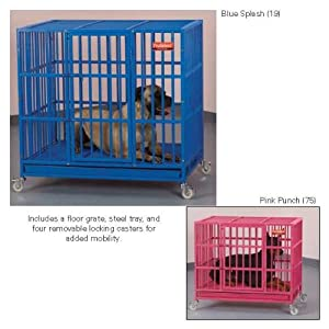 ProSelect Empire Color Cage for Pets, Medium, Blue Splash