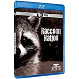 Nature: Raccoon Nation [Blu-ray]