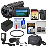 Sony Handycam FDR-AX33 Wi-Fi 4K Ultra HD Video Camera Camcorder with 64GB Card + Case + LED Light + Microphone + Battery & Charger + Filter Kit