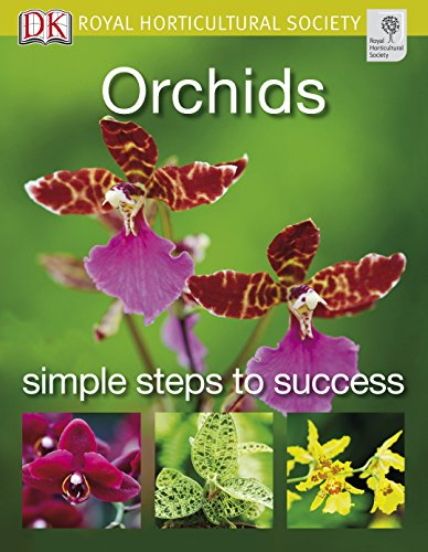 orchids-rhs-simple-steps-to-success