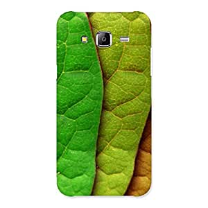 Cute Leaf Pattern Multicolor Back Case Cover for Samsung Galaxy J5