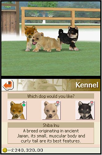 how to teach your dog to play dead in nintendogs