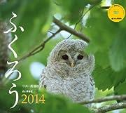 ふくろう 2014 (ヤマケイカレンダー2014 Yama-Kei Calendar 2014)