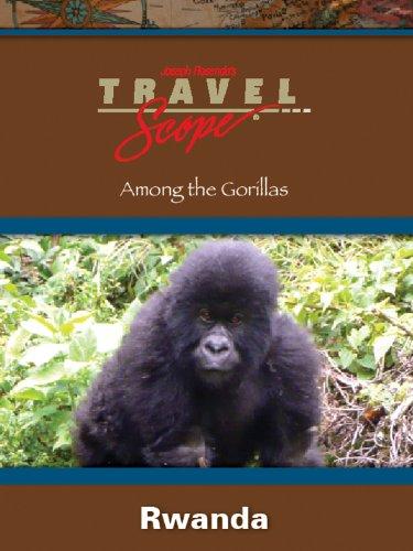 Rwanda -- Among the Gorillas