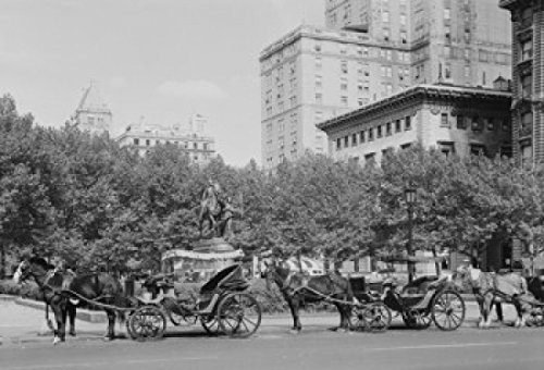 USA New York State New York City Plaza Hotel at Fifth Avenue and Central Park South Poster Print (24 x 36) (Hotel Park City compare prices)