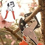 Seedlings Engraft Grafting Garden Tools Nursery Fruit Trees Grafting // Plántulas injertar injerto herramientas de jardín de árboles frutales de vive