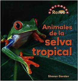 Amazon.com: Animales de La Selva Tropical (Rebus Animals in the Wild