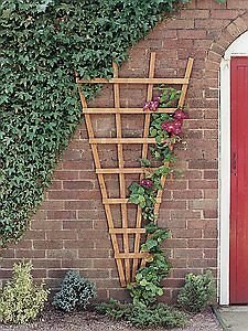 Grange Fencing Ltd Heavy Duty Fan Trellis