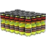 Penn 1 Championship Tennis Balls Pack of 24