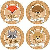 Baby Monthly Stickers Woodland Animals - Milestone Onesie Stickers - 1-12 Months - Bodysuit Baby Stickers By Pinkie...