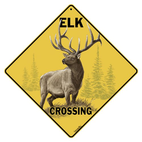 Elk Crossing 12