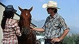 Image de Wild Horses [Blu-ray]