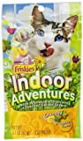 Friskies Cat Treats Crunchy Indoor Adventures Chicken Flavor, 2.1-Ounce Pouches (Pack of 10)