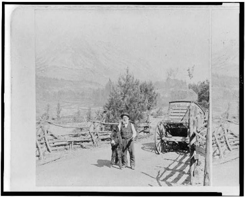 photo-mount-shastacaliforniacamountainsburromanstagecoachgold-gulch-campc1895