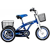 Tauki™ 12 Inch Kids Tricycle, Front and Rear Baskets, Hand Brake, Blue/Pink, for 2-5 Years Old