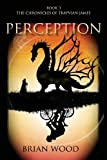 Perception (0988463474) by Wood, Brian