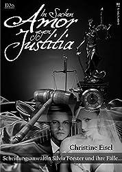 In Sachen Amor gegen Justitia- Scheidungsanwltin Silvia Frster und ihre Flle (German Edition)