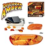 Discover Amber Science Kit - Polish R...