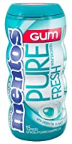 Mentos Gum Pocket Bottle Wintergreen 1.06 Ounce Pack of 10