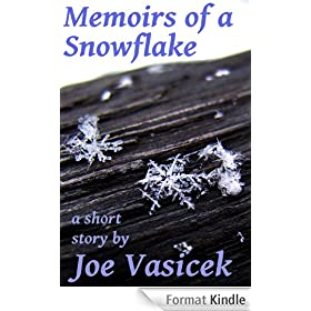 Memoirs of a Snowflake (English Edition)