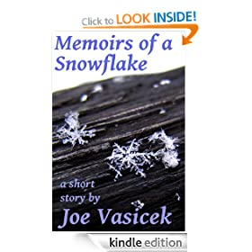 Memoirs of a Snowflake
