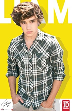 1D Liam Payne Poster