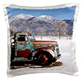 3dRose pc_210256_1 Old Truck Sitting The a Field Taos New Mexico USA Pillow Case, 16