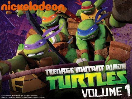 Teenage Mutant Ninja Turtles: Season One, Part One movie