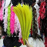 Maslin 50pcs 50-55CM/long Natural Silver Pheasant Tail Feathers White Pheasant Feathers for Crafts Wedding DIY Costume Feathers Plumes - (Color: Yellow) (Color: yellow)
