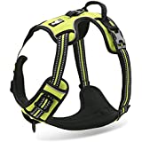 Chai's Choice Best Front Range No-Pull Dog Harness. 3M Reflective Outdoor Pet Vest with Handle. *New 2015 Model* (Green, Medium) Fits Chest Size 22-27 Inches
