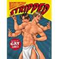 Stripped: A Story of Gay Comics
