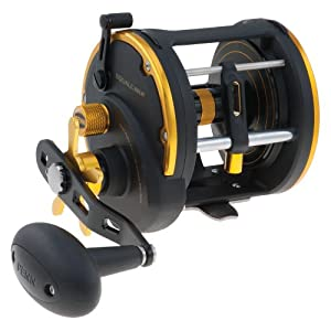 Penn Squall Level Wind Reel SQL50LW by Penn